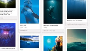 """de la mer"" board on KK's Pinterest"