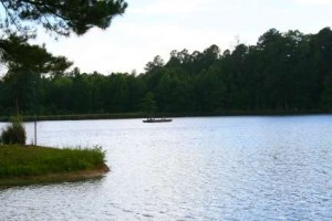 Lake at Camp Bratton Green, 2010